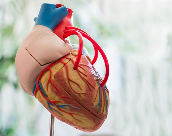 Elektrokardioversion