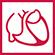 Logo-Deutsche-Gesellschaft-fuer-Kardiologie-small